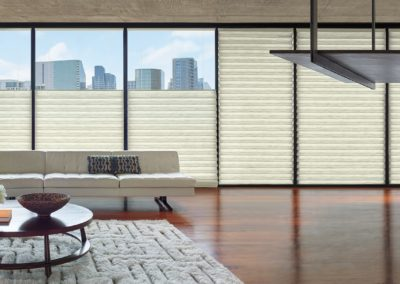 Vignette by Hunter Douglas